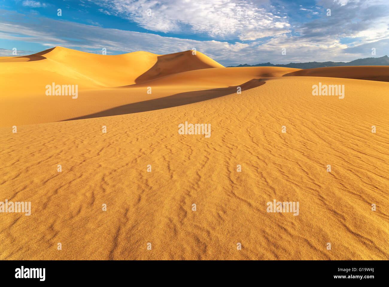 Sunrise at sand dunes in the Desert - Stock Image