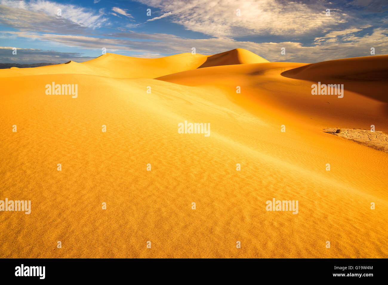 Sand dunes at heat sunrise in the Desert - Stock Image