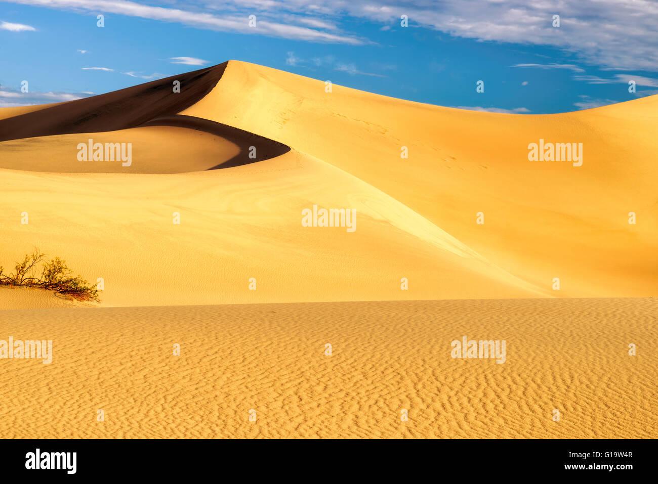 Sand dunes in the Desert - Stock Image
