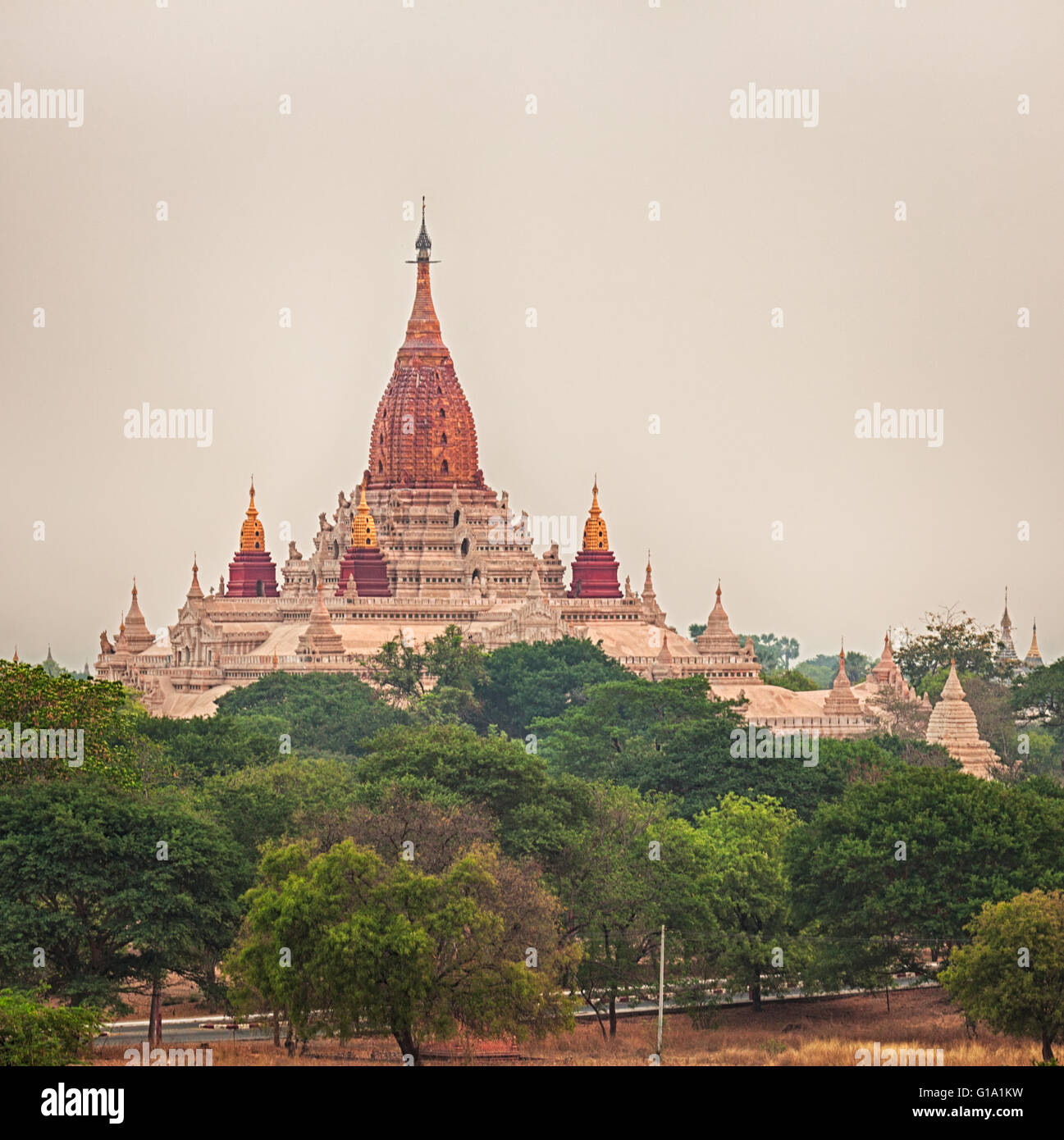 View from the Shwesandaw in Bagan. Myanmar. - Stock Image