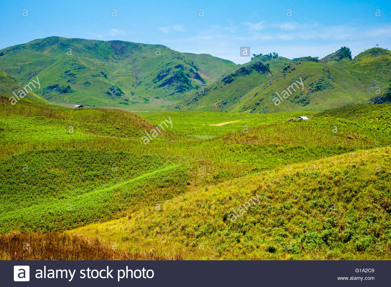 Lush green rural landscape, Louangphabang Province, Laos - Stock Image