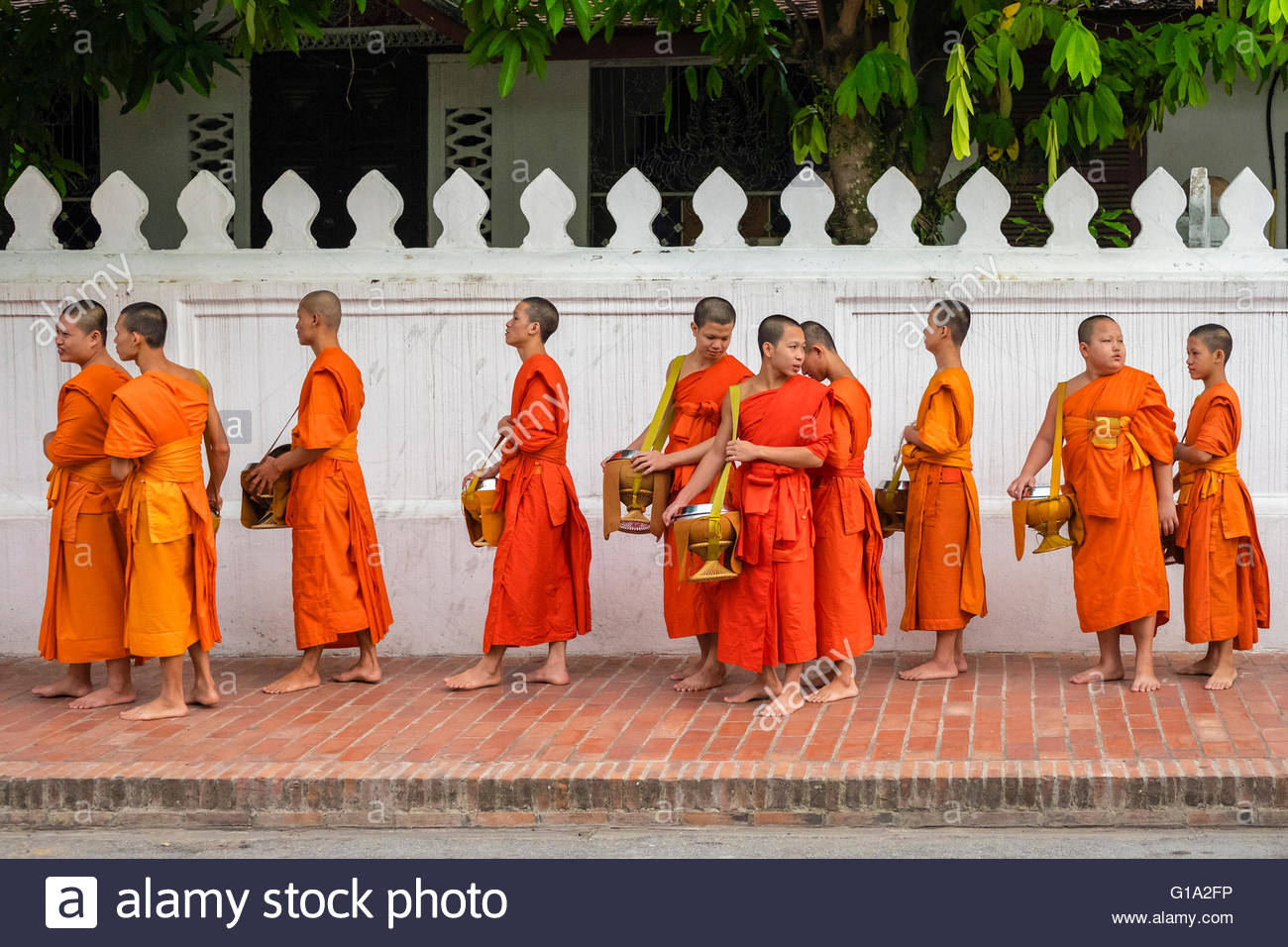 Buddhist novice monks line up to recieve alms (Tak Bat) at dawn, Luang Prabang, Louangphabang Province, Laos - Stock Image