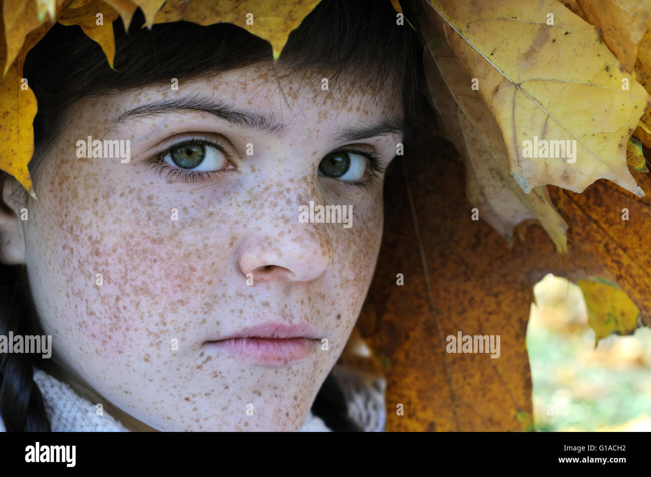 close-up portrait of freckled teenage girl - Stock Image