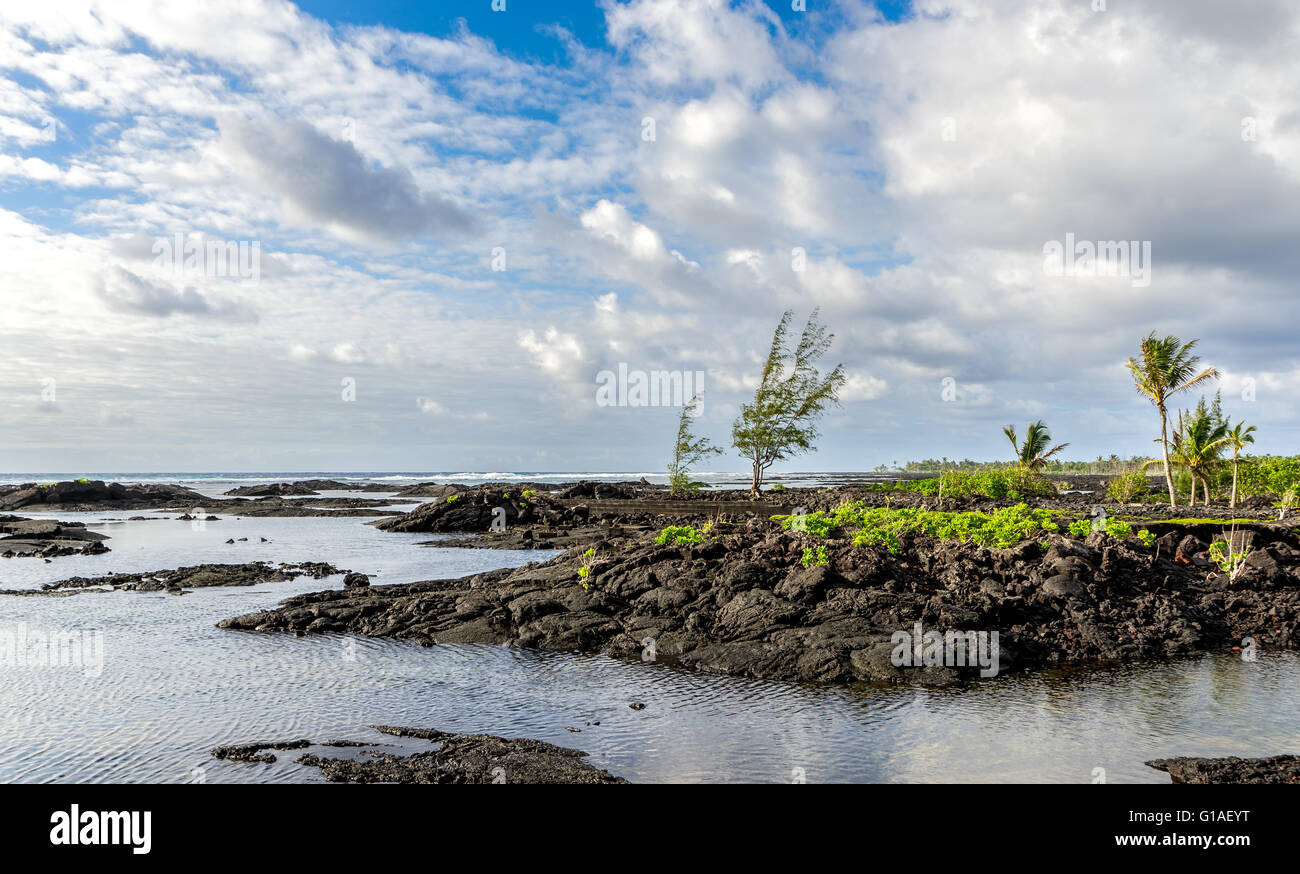 The kapoho tide pools on eastern portion of the Big Island of Hawaii. Formed from the 1960 eruption. The tide pools - Stock Image