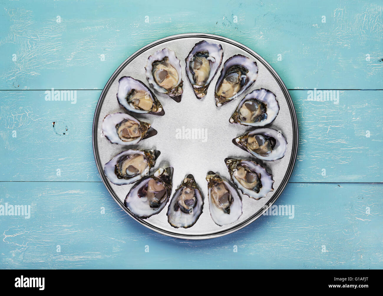 dozen fresh oysters on special cooking and serving metal tray - Stock Image