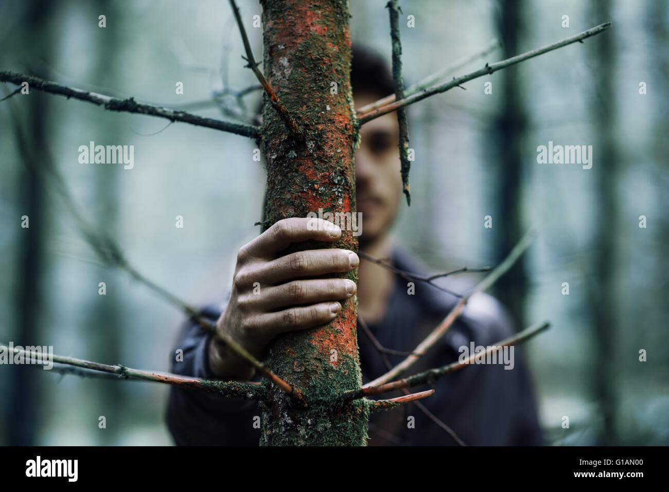 Young man hiding in the woods and holding a trunk, hand on foreground, selective focus - Stock Image