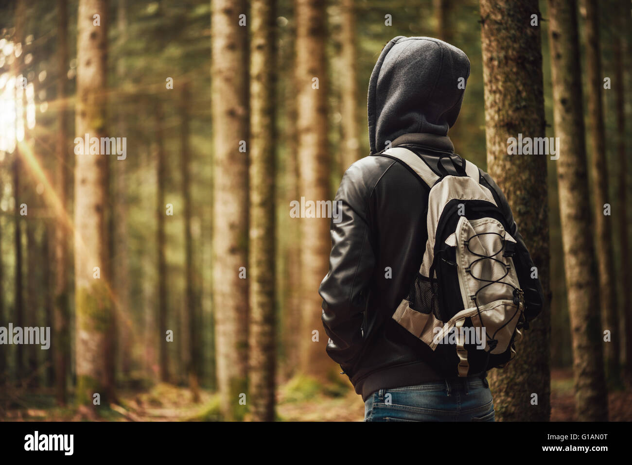 Young hooded man hiking in the woods, freedom and nature concept - Stock Image