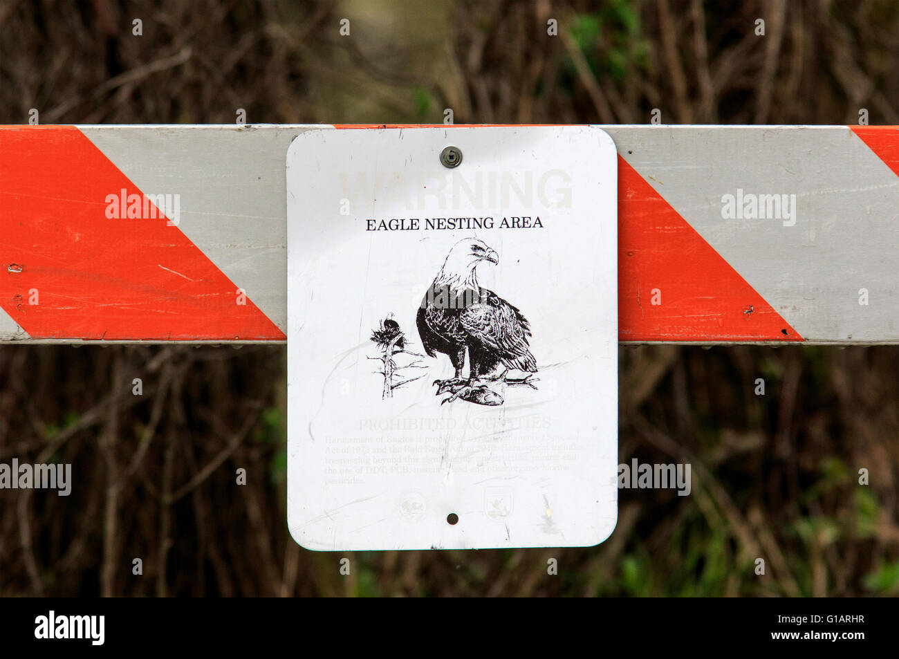 Sign on barricade restricting access due to the presence of a bald eagle nest. - Stock Image