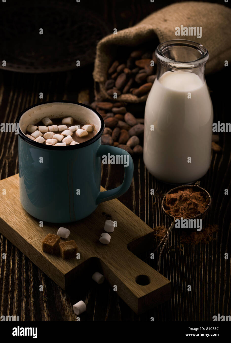 Retro mug with homemade hot chocolate and marshmallow - Stock Image