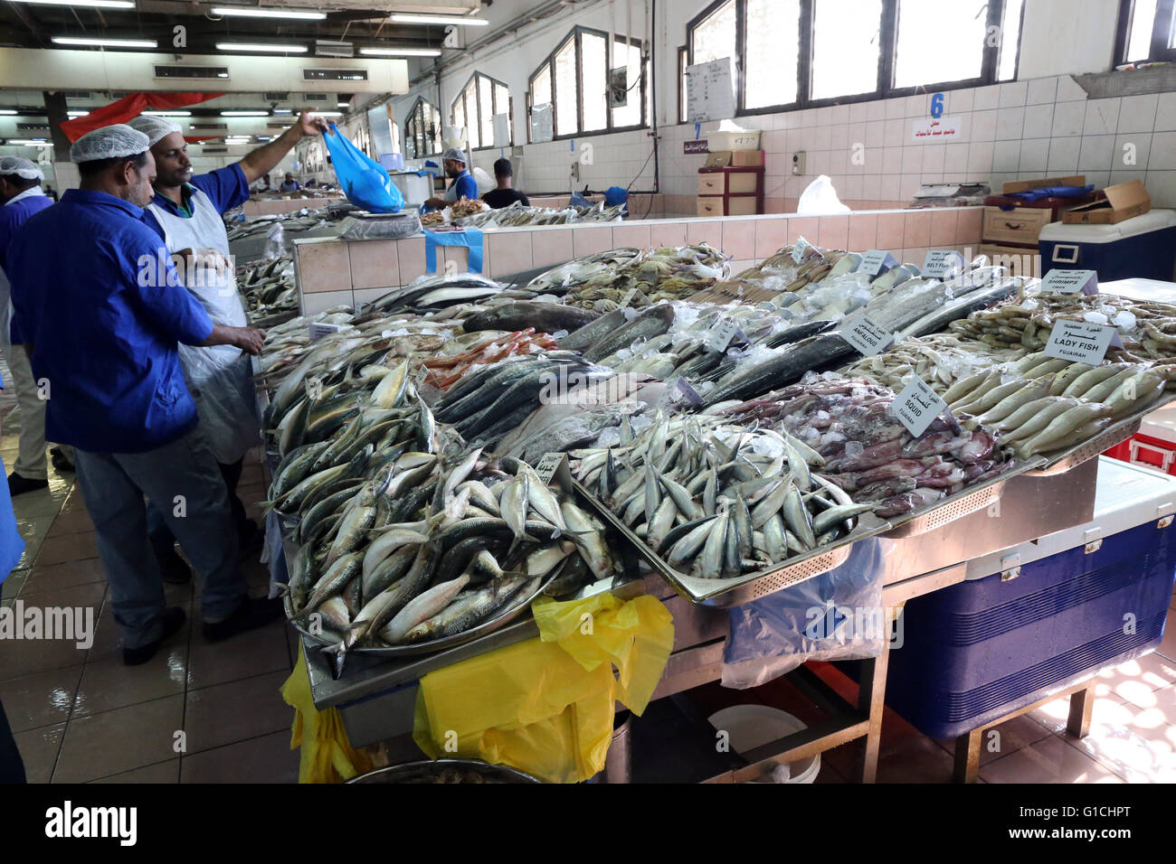 Abu Dhabi Fish Market Stock Photos & Abu Dhabi Fish Market Stock