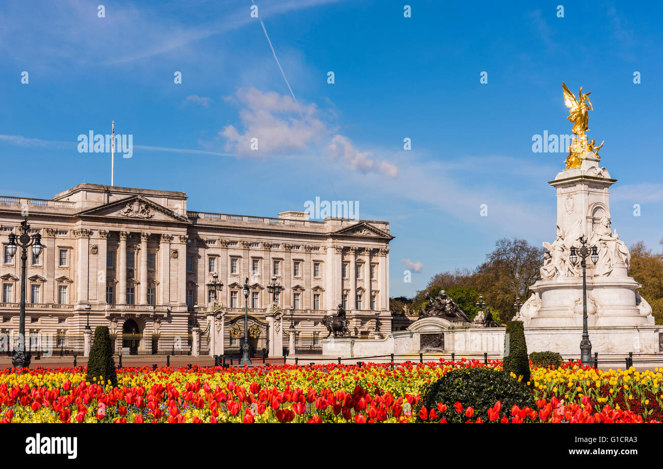 Spring tulips captured in front of Buckingham Palace, London, UK. - Stock Image
