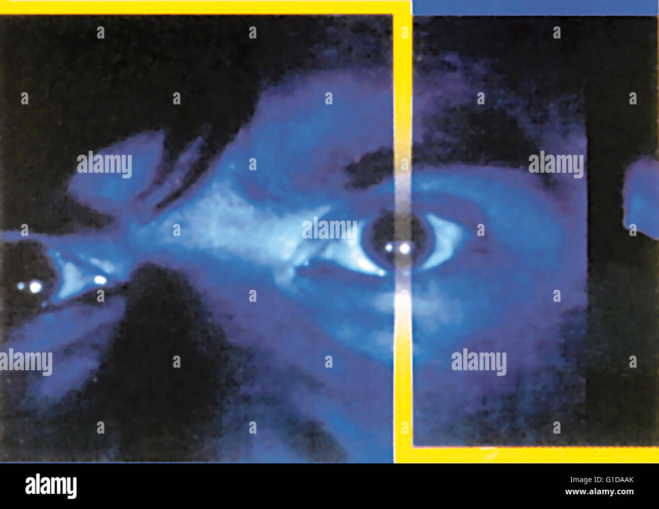 Real X-Files, The - Stock Image