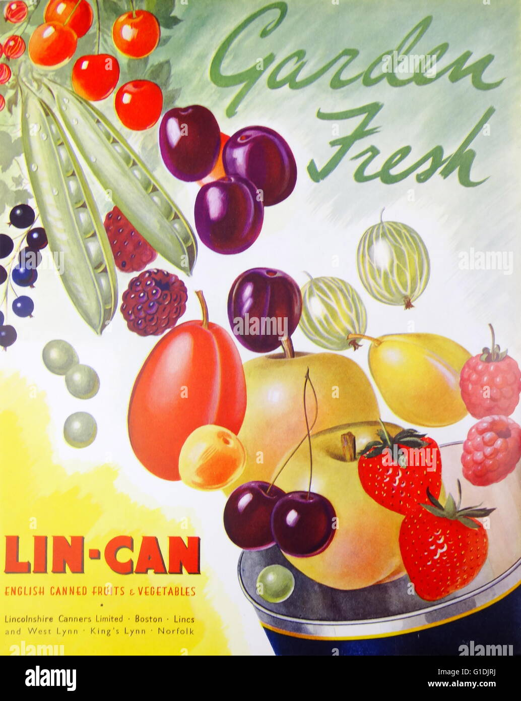 Advert for Lin-Can Canned Fruit - Stock Image