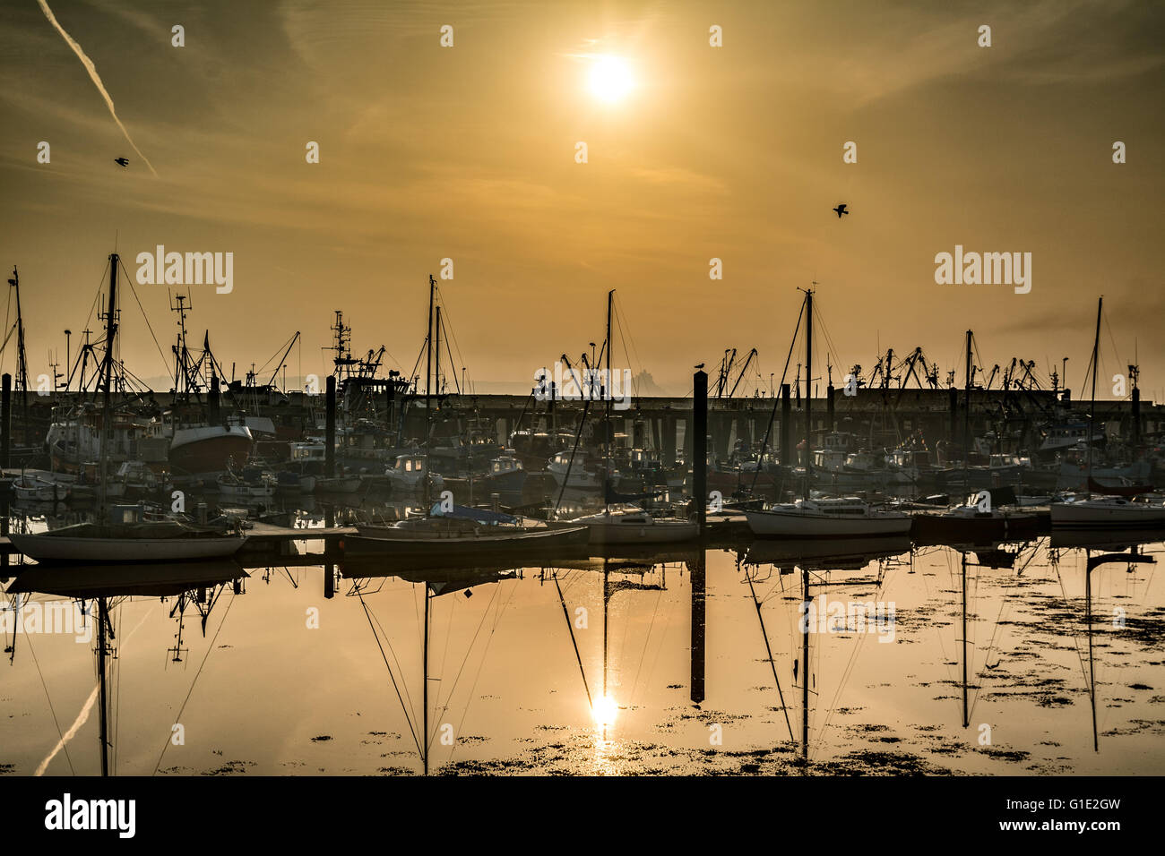 Newlyn, Cornwall, UK. 13th May 2016. UK Weather. After a week of mist the sun finally shines over Newlyn Harbour. Stock Photo