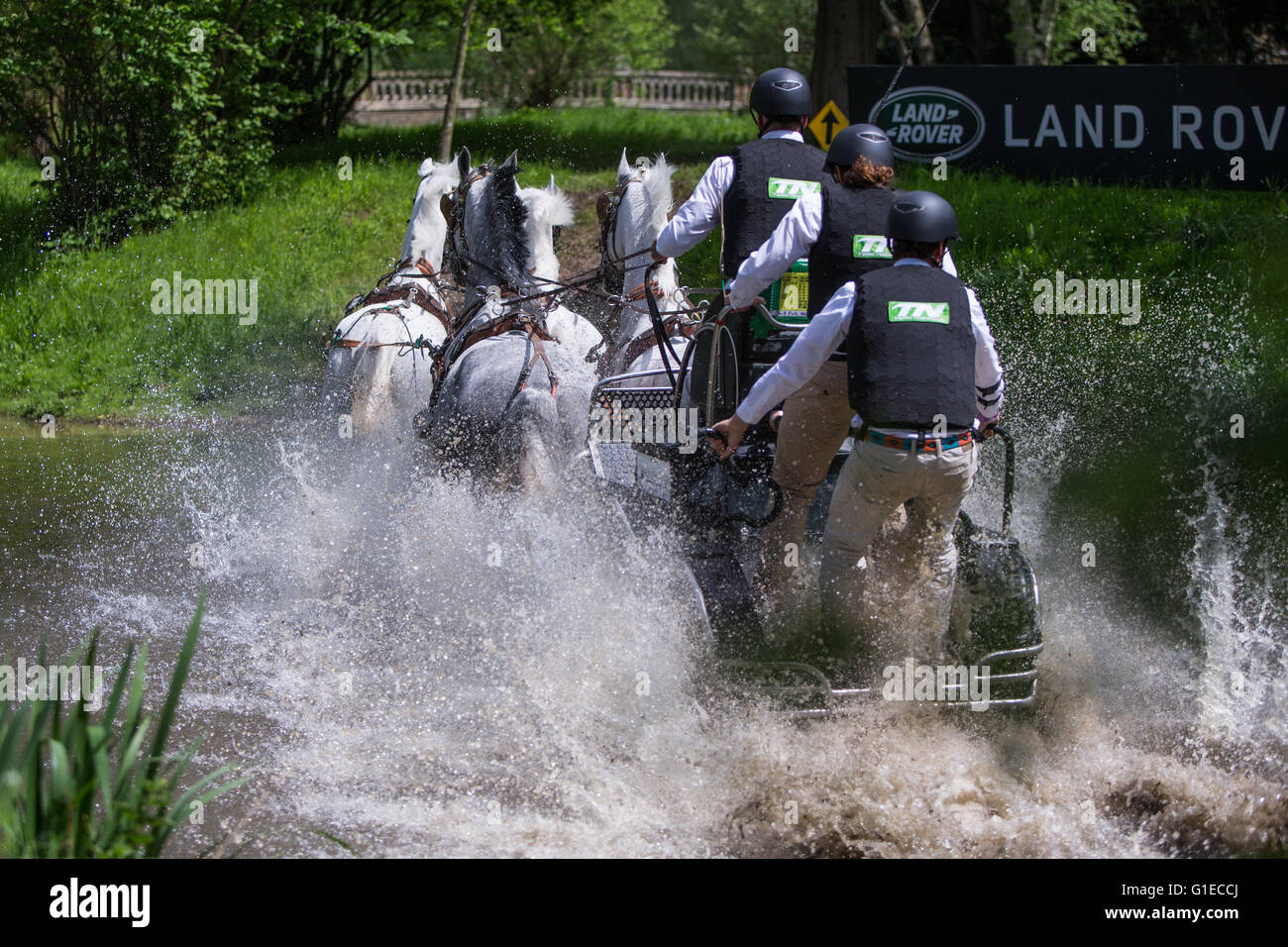 Great Windsor Park, Windsor, UK. 14th May, 2016. Royal Windsor Horse Show. Daniel Naprous enters the water obstacle - Stock Image