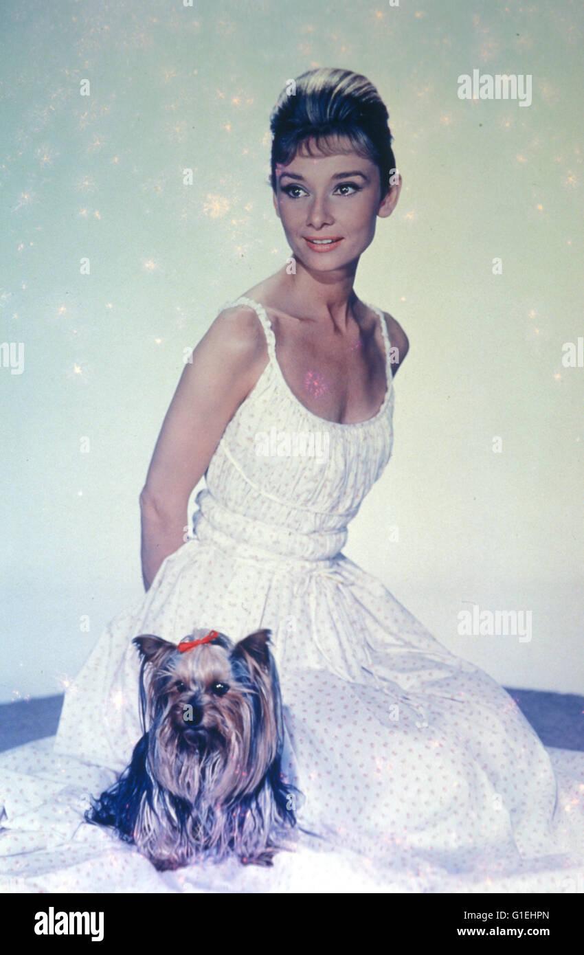 Hepburn, Audrey / Audrey Hepburn, - Stock Image