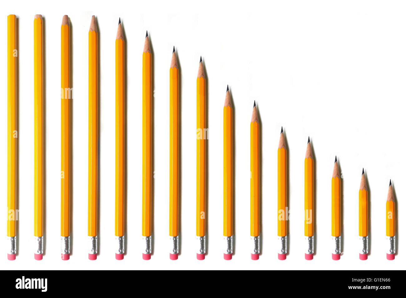 A line of pencils going from tall and unsharpened to short photographed against a white background. - Stock Image