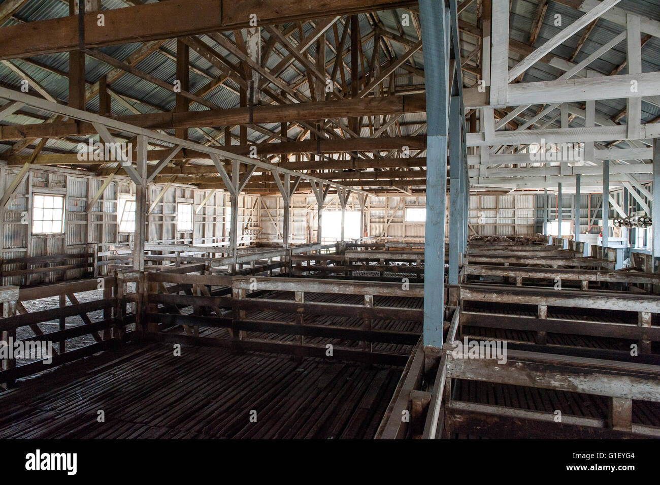 Sheep shearing wool room at Cerro Guido estancia (estate) Torres del Paine National Park Chilean Patagonia Chile - Stock Image