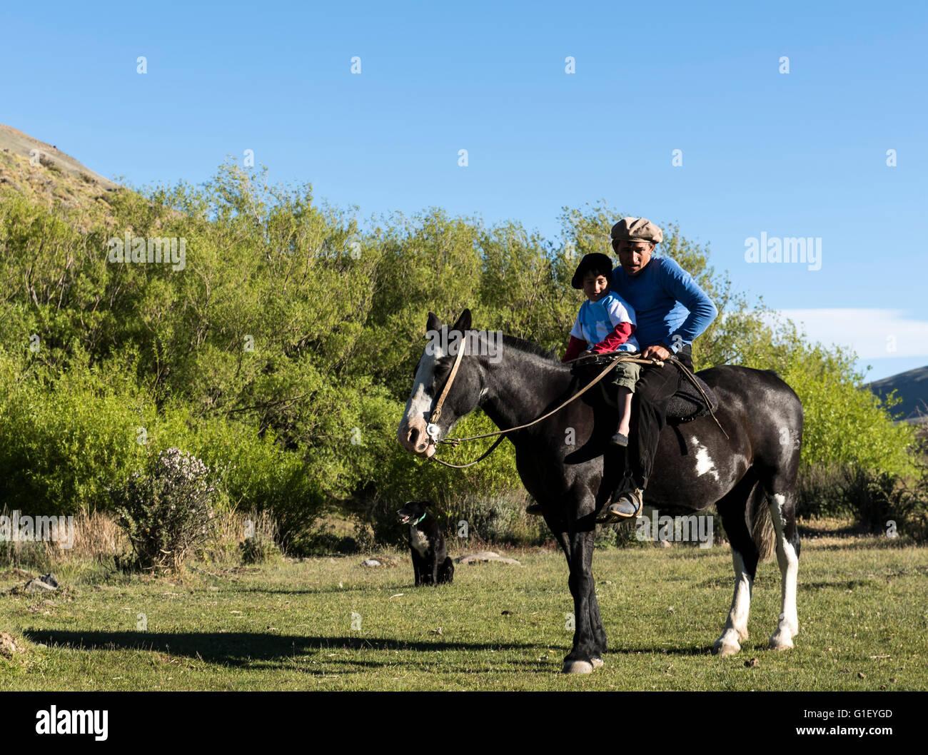 Gaucho on horse (Equus ferus) Calafate Patagonia Argentina - Stock Image