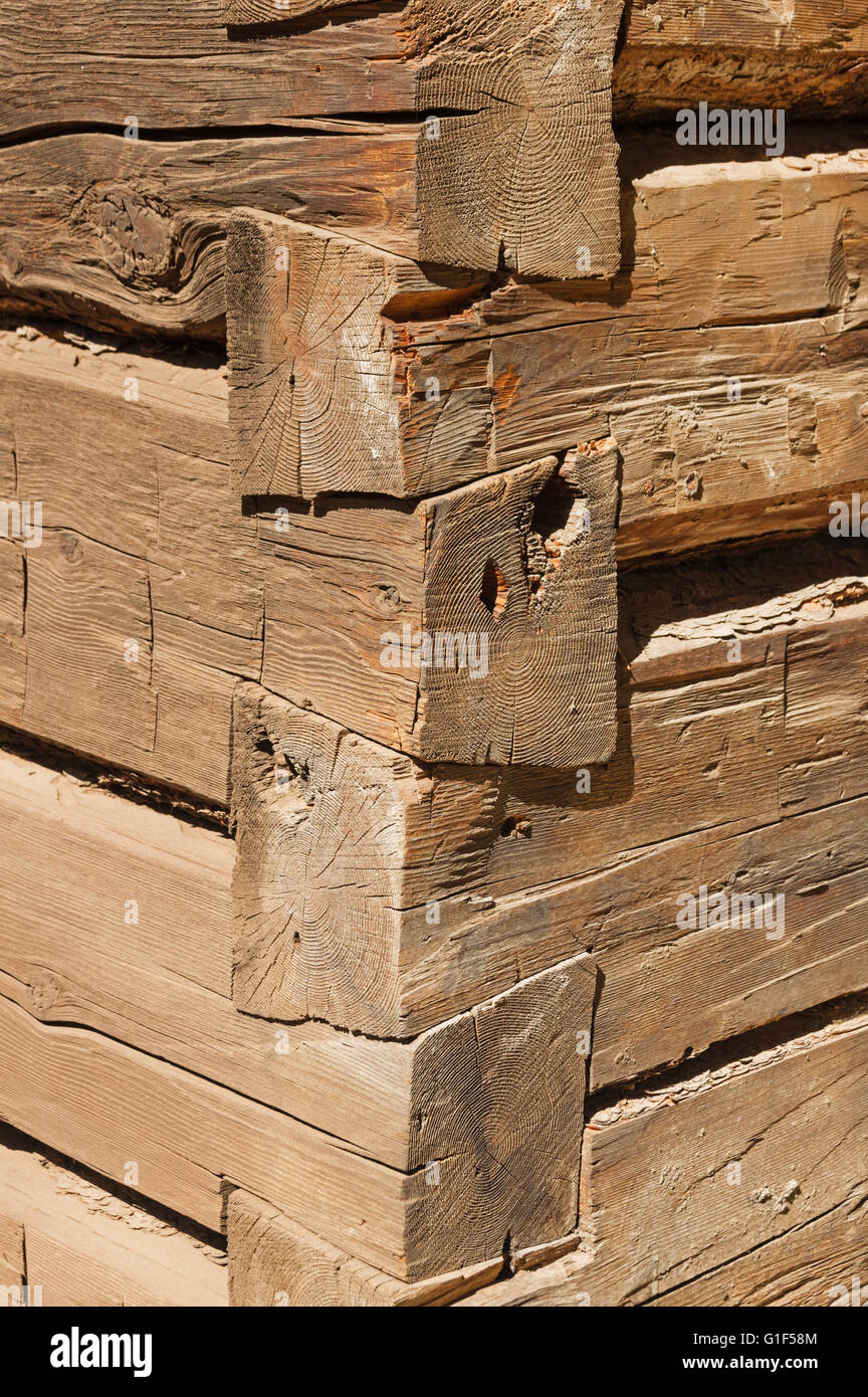 detail of the corner of a log cabin showing dovetail joints - Stock Image