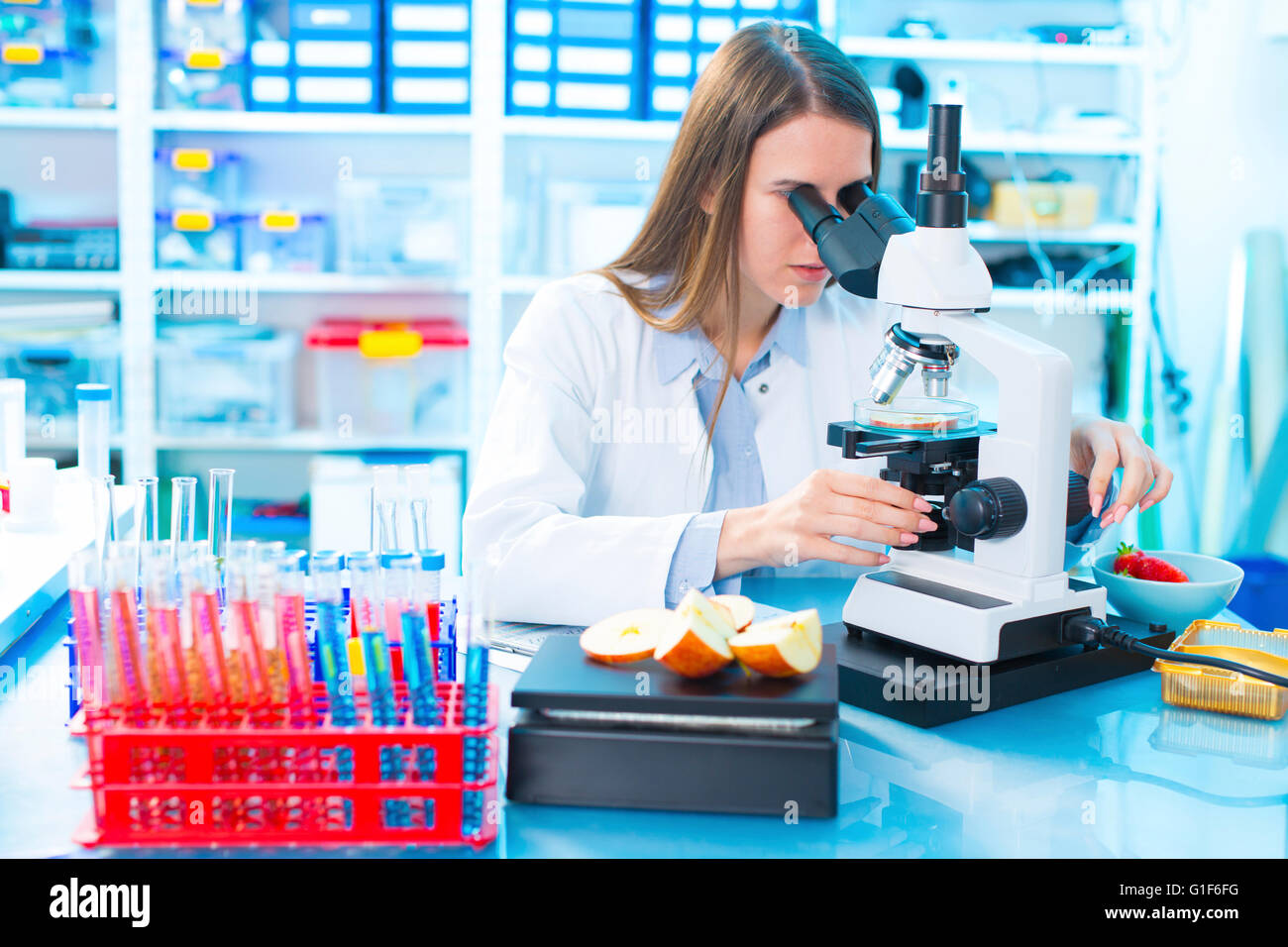 MODEL RELEASED. Female scientist studying food samples under a microscope. - Stock Image