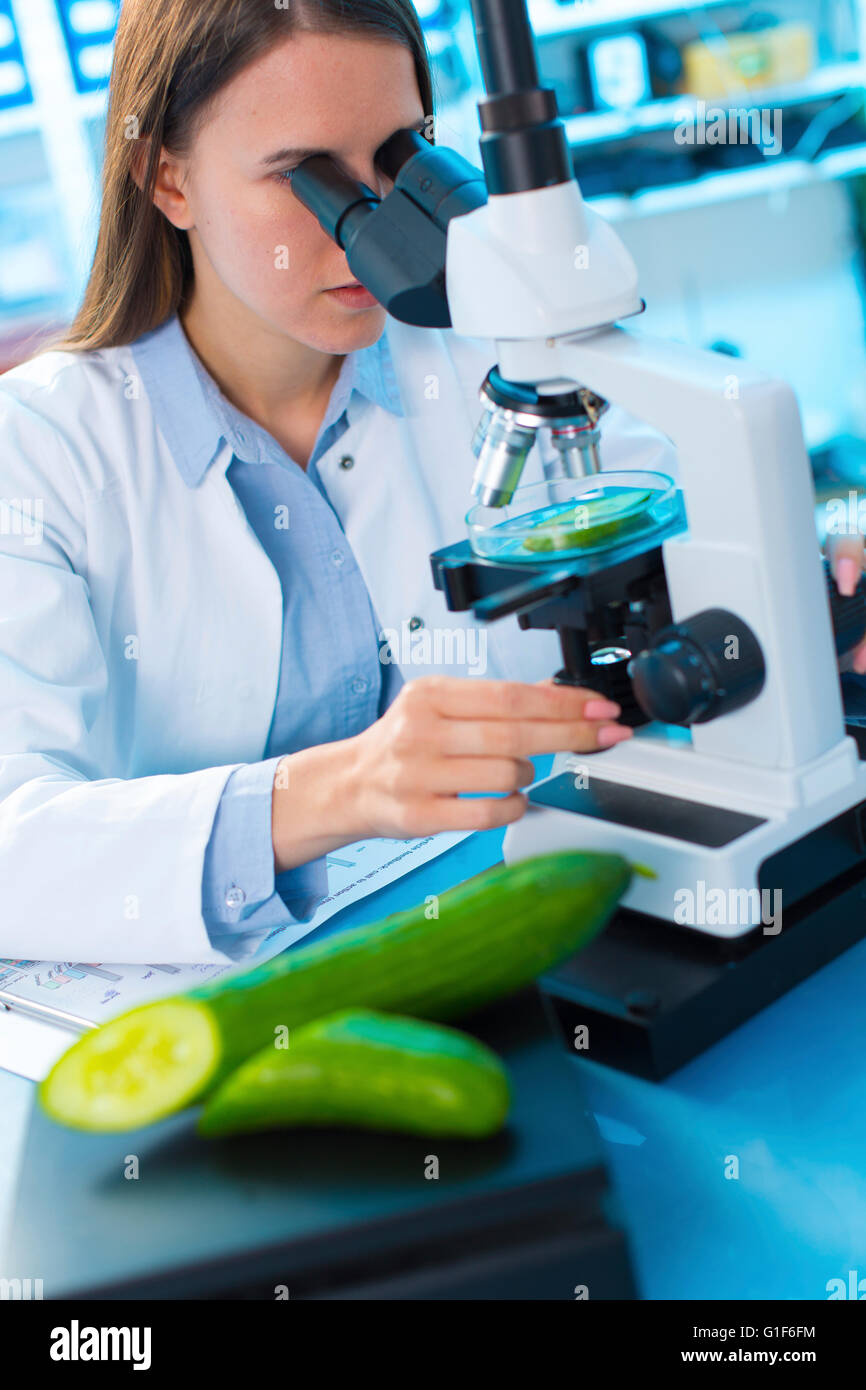 MODEL RELEASED. Female scientist studying cucumber under a microscope. - Stock Image