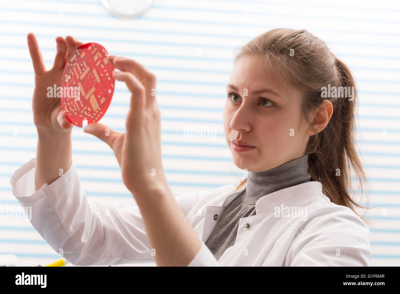 MODEL RELEASED. Female technician holding electrical component in the laboratory. - Stock Image