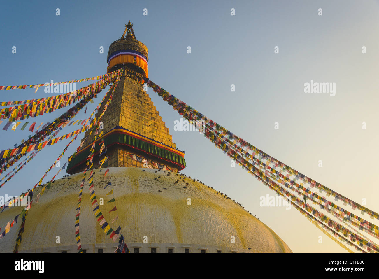 Boudhanath Stupa with hundreds of Pigeons and Prayer flags in Kathmandu, Nepal - Stock Image