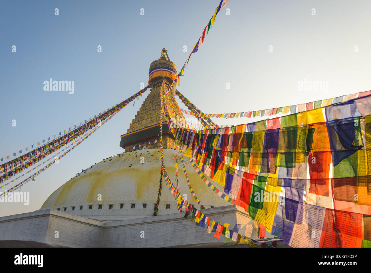 Boudhanath Stupa with hundreds of Pigeons and Prayer flags in Kathmandu, Nepal - Stock Image