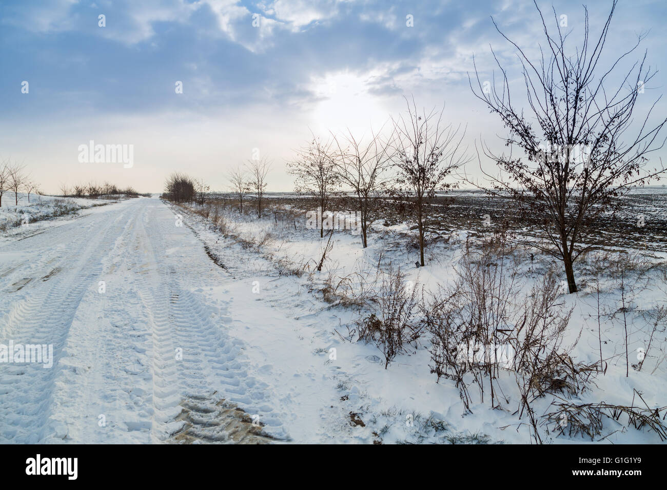 Agricultural road covered in snow - Stock Image