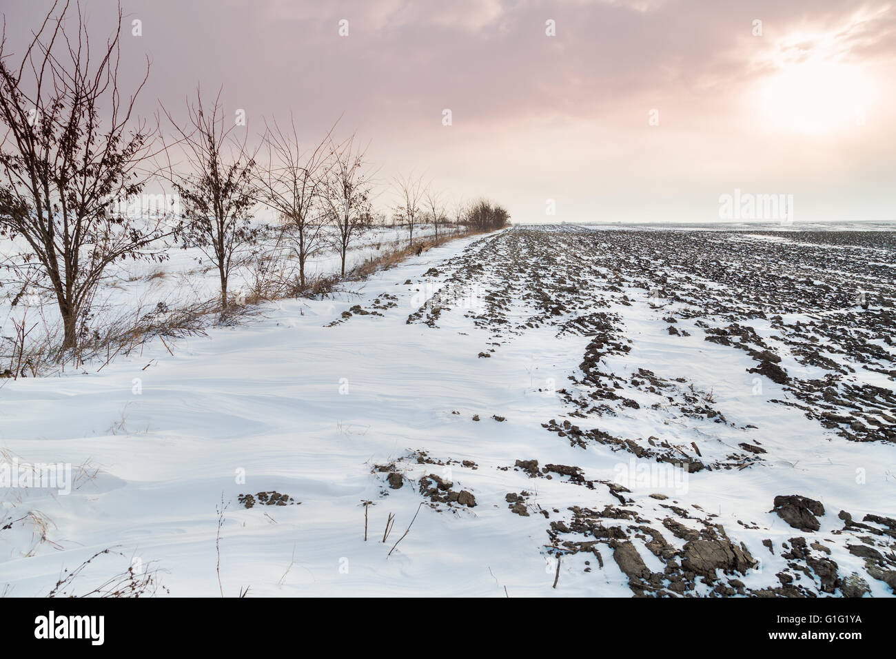 Arable land covered in snow - Stock Image