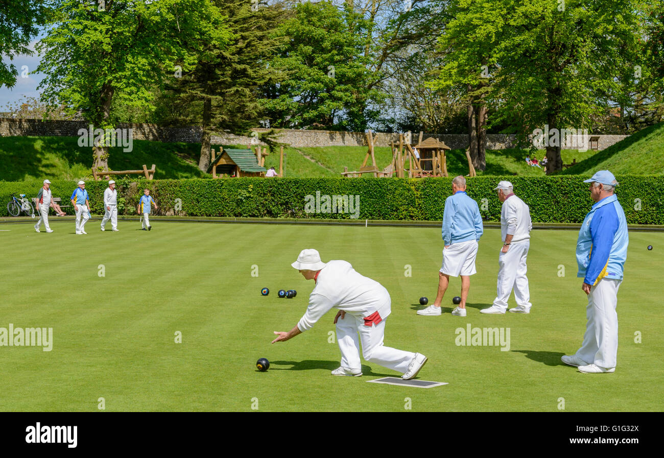 Elderly lady bowling on a bowling green in the UK. - Stock Image