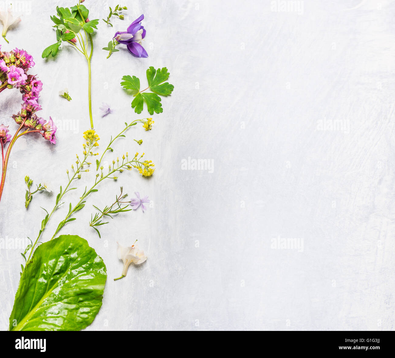 Various Of Spring Or Summer Flowers And Plants On Light Wooden Stock