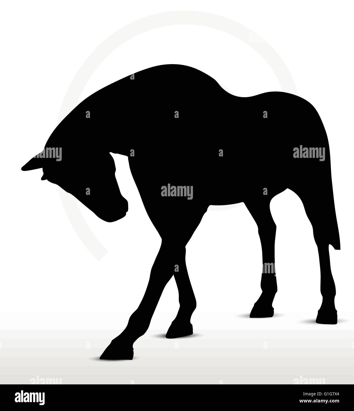 Eps 10 Vector Horse Silhouette In Walking Head Down Position Stock Vector Image Art Alamy