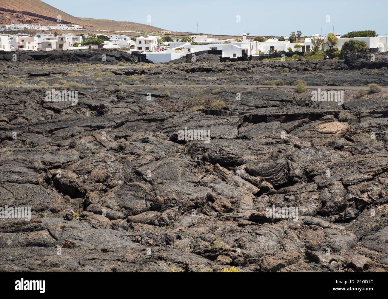 Solidified pahoehoe or ropey lava field, Tahiche village, Lanzarote, Canary Islands, Spain - Stock Image