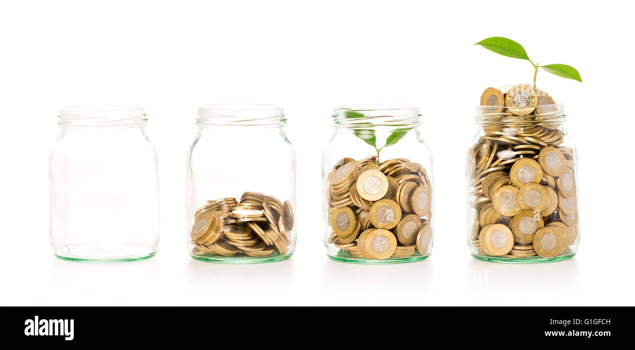 Money growing plant step with deposit coin in bank concept. Isolated in white. - Stock Image
