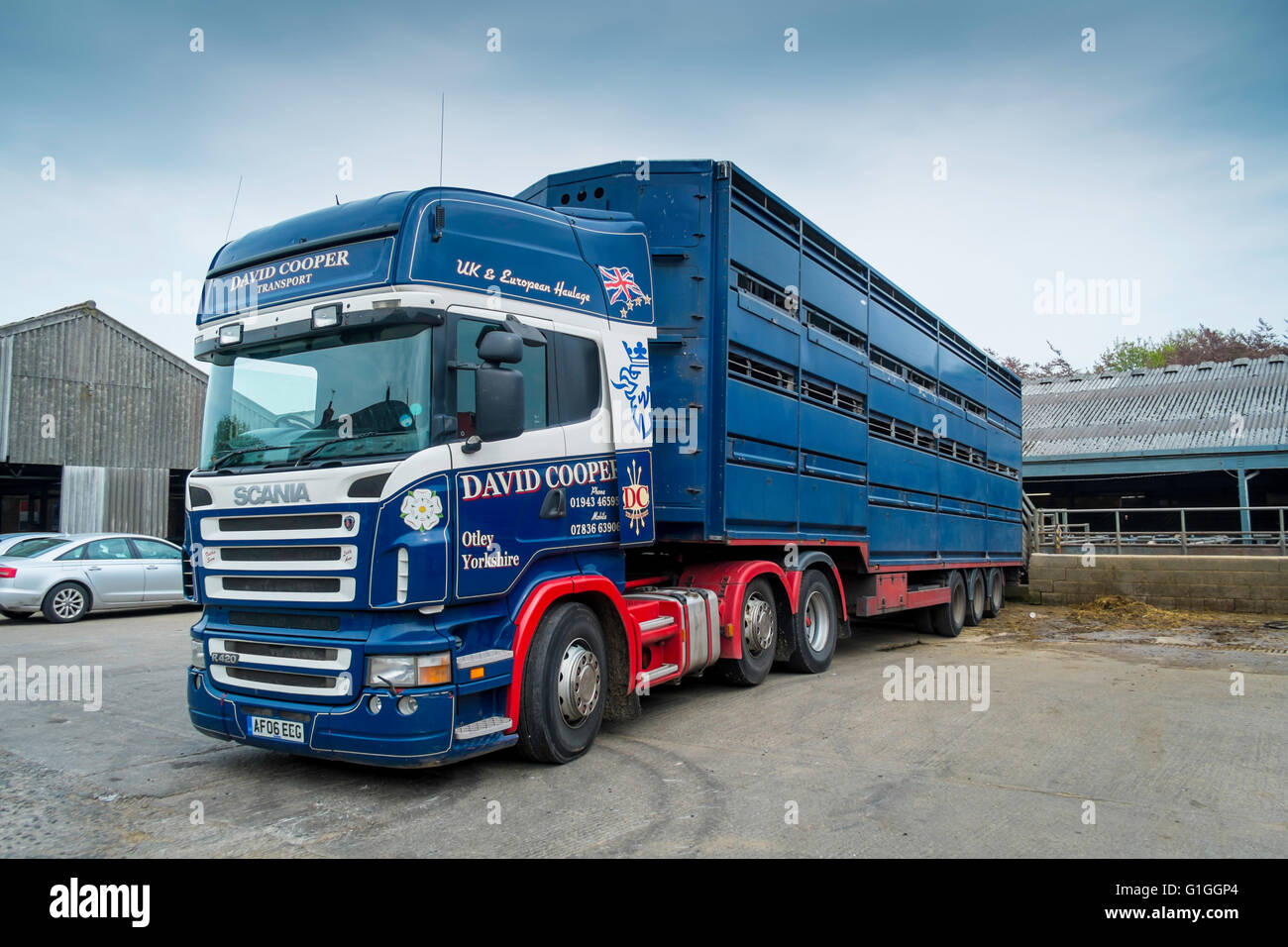 A David Cooper Transport Cattle Market Truck Waiting To Load Farm Animals Sold At Livestock Sale