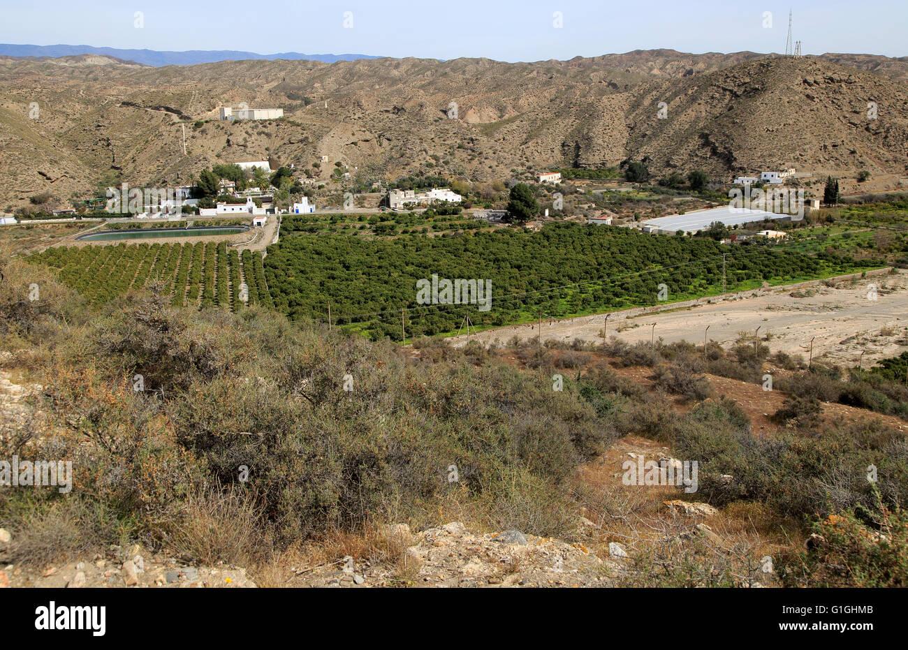 Fruit farming in River Andarax valley viewed from Los Millares prehistoric settlement, near Gador, Almeria, Spain - Stock Image