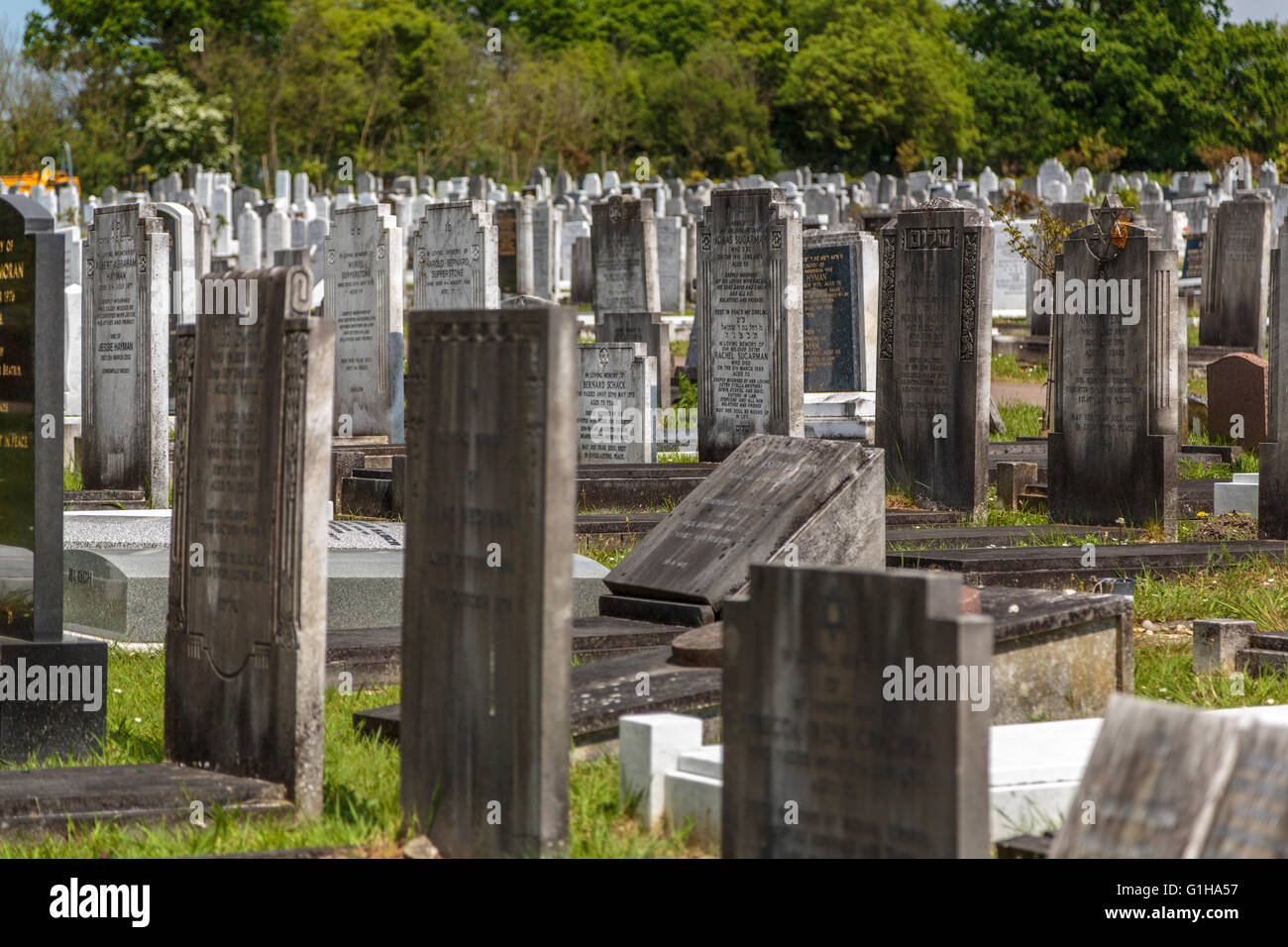 Gravestones in a Jewish cemetery London UK - Stock Image