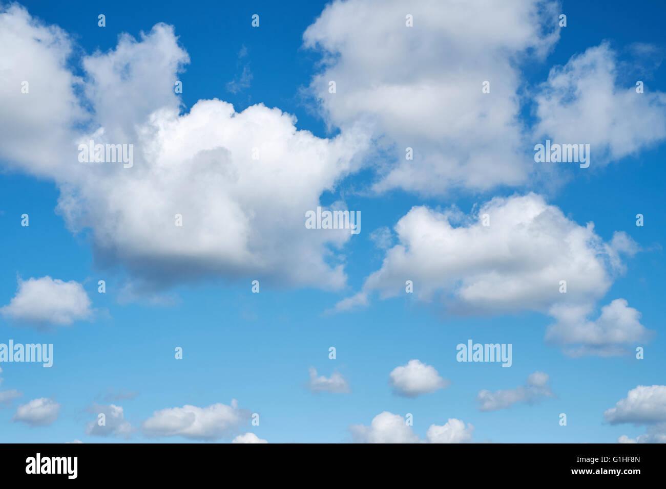 Cumulonimbus cloud formations against a bright blue sky. Cambridgeshire. UK. - Stock Image