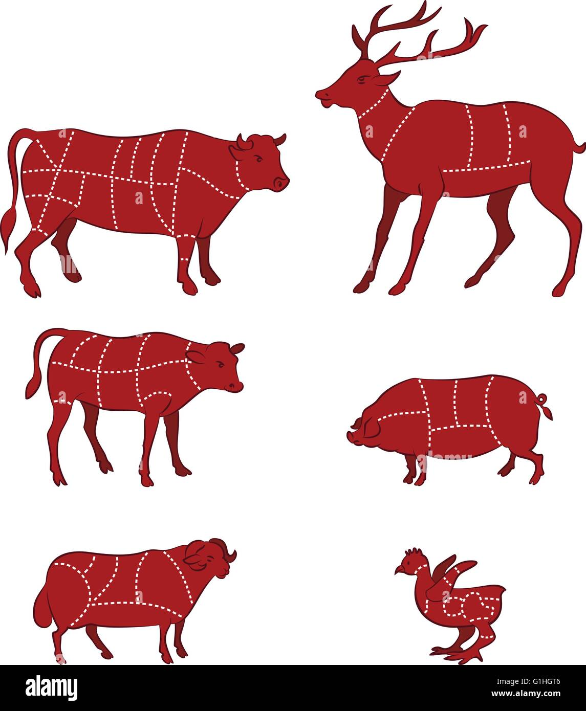 vector illustration of Diagram Guide for Cutting Meat - Stock Image