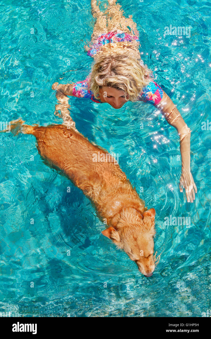Funny photo of sunbathing woman playing with dog and training dog puppy in swimming pool with blue water. - Stock Image