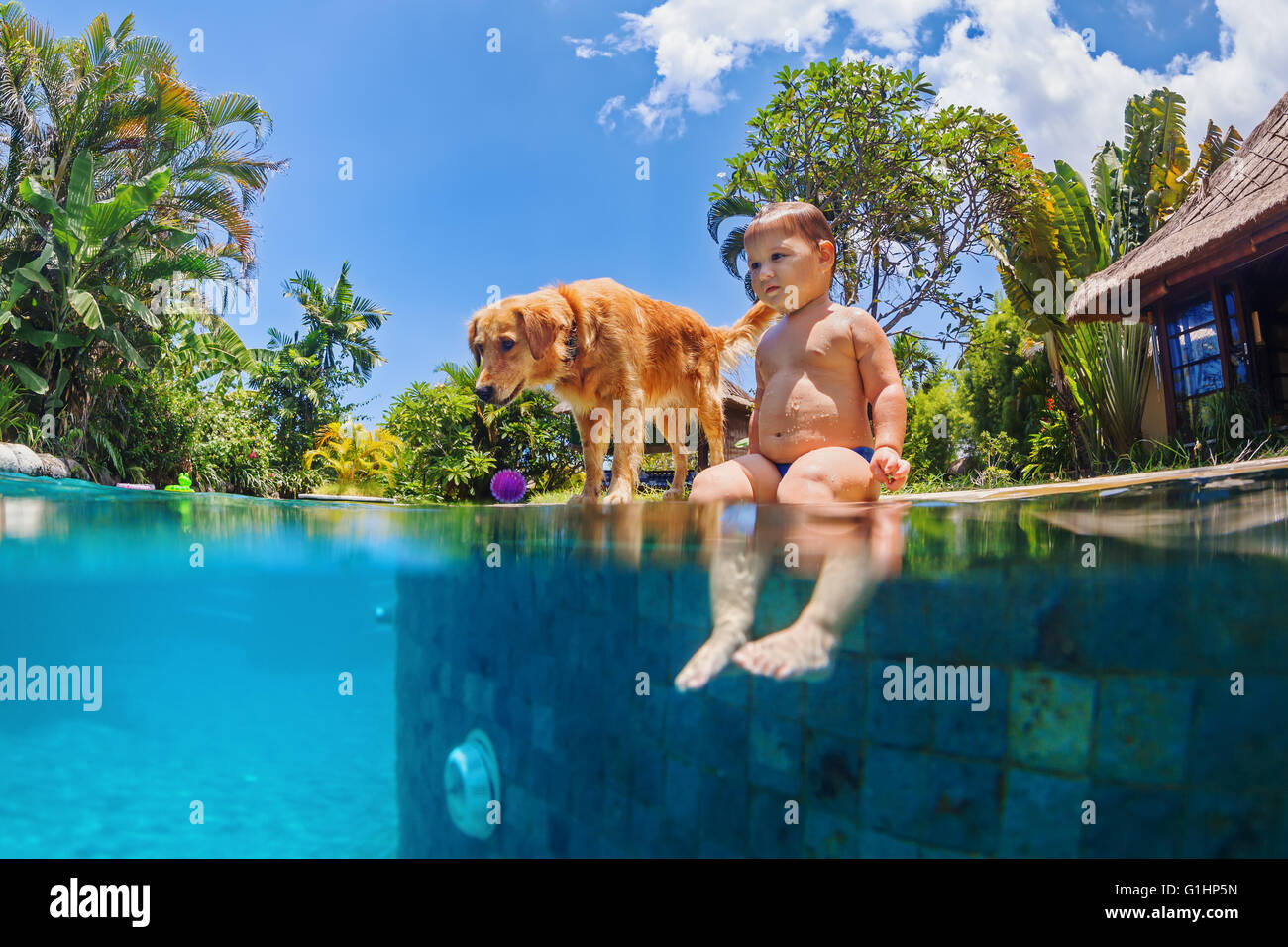 Funny underwater photo of little baby and dog swimmig in blue outdoor swimming pool. - Stock Image