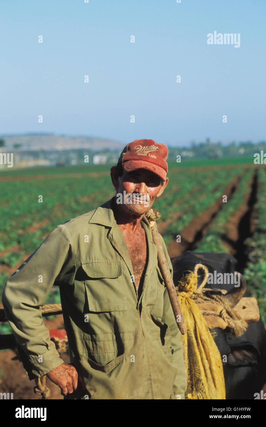 farm laborer on Isla de la Juventud Cuba - Stock Image