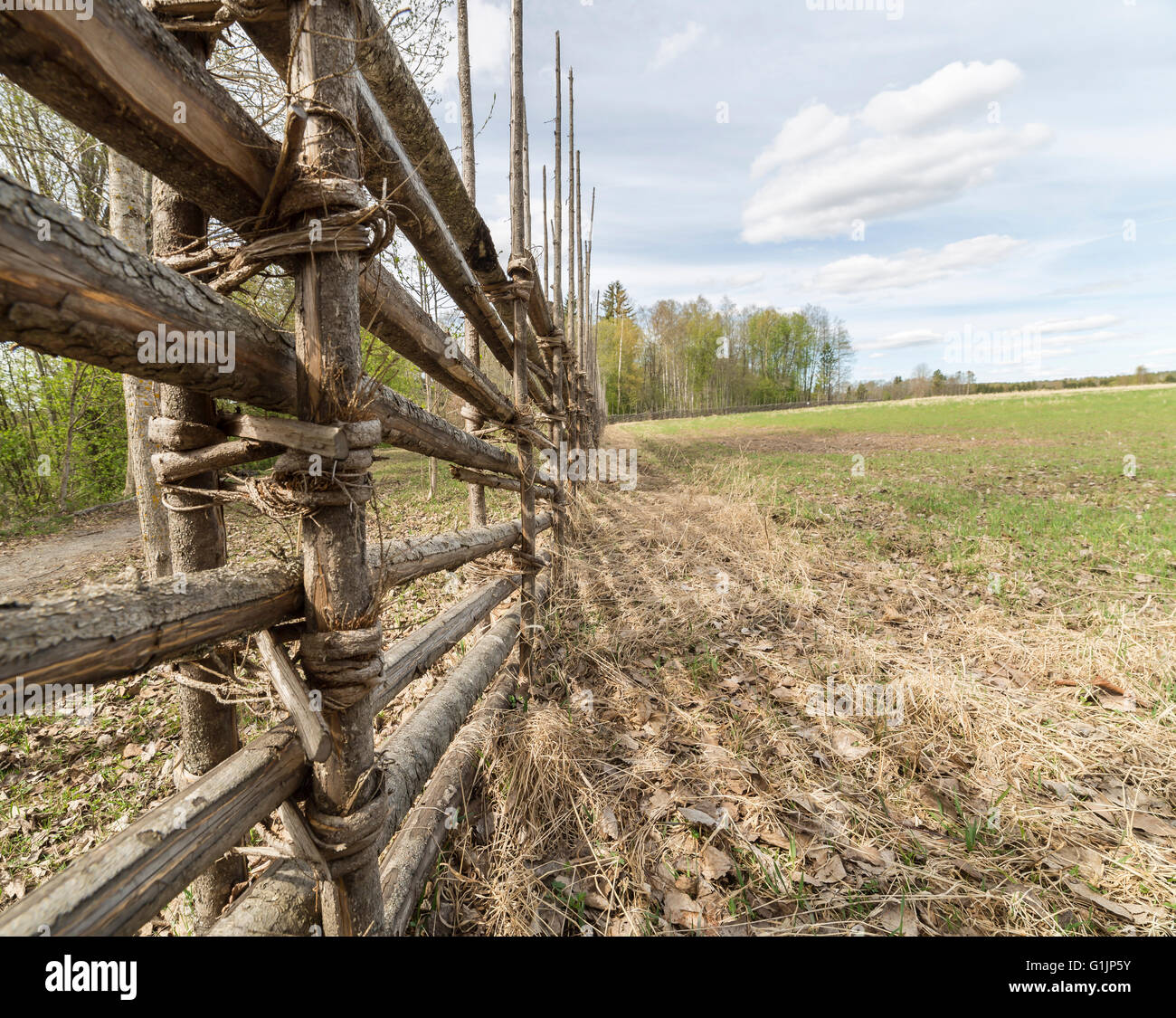 Swedish Farm Fence by Field with trees and a cloudy sky - Stock Image
