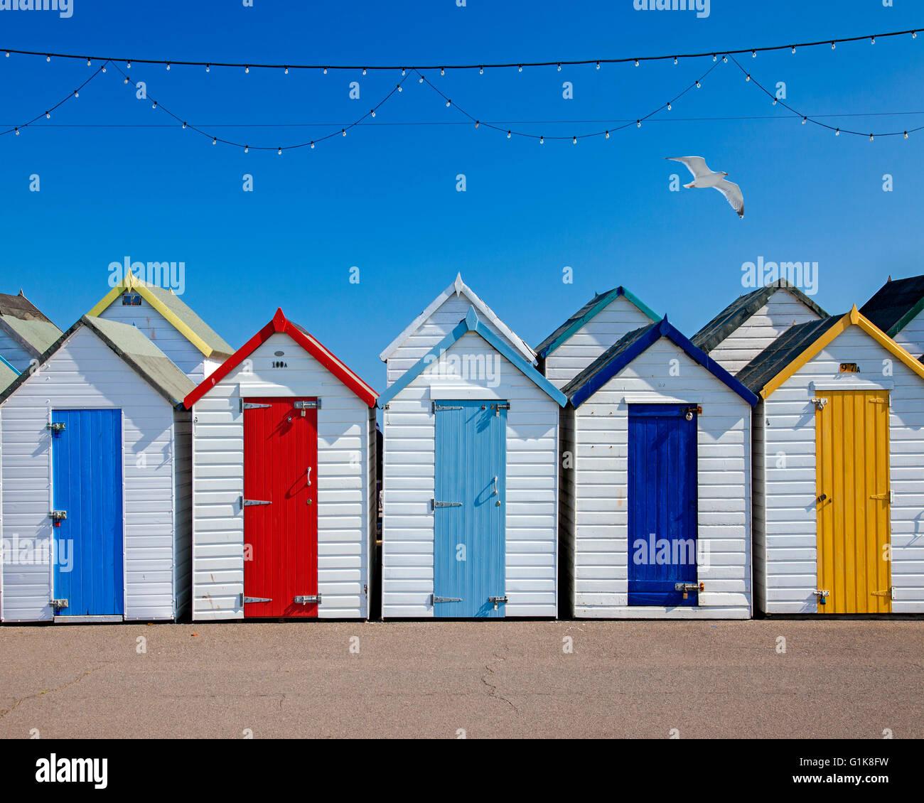 GB - DEVON: Beach Huts at Paignton - Stock Image