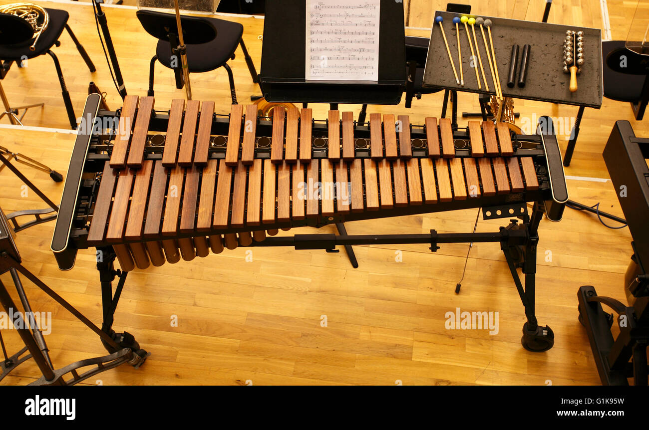 Orchestral 4 octave Xylophone made by Adams - Stock Image