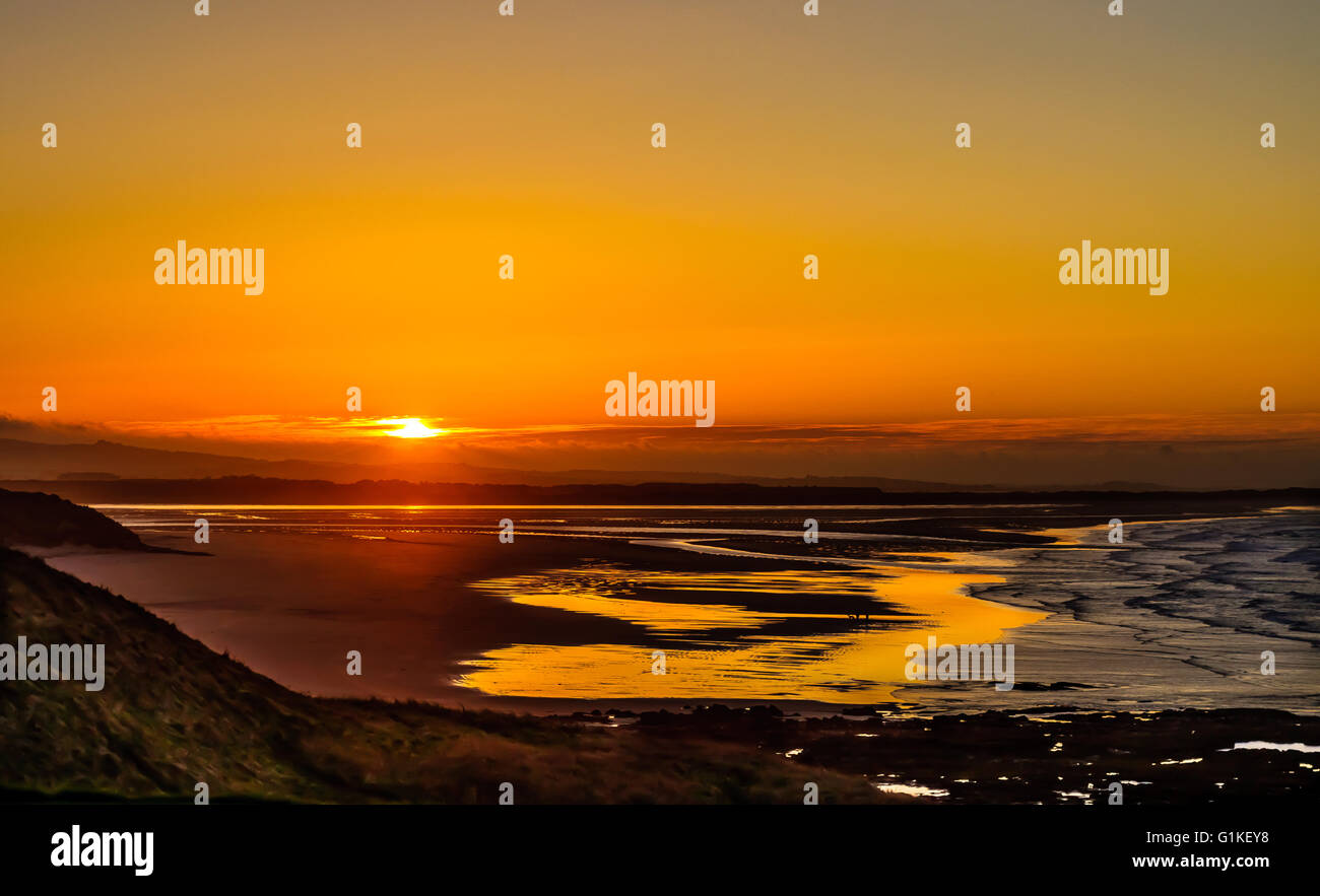 Evening Glory Stock Photo