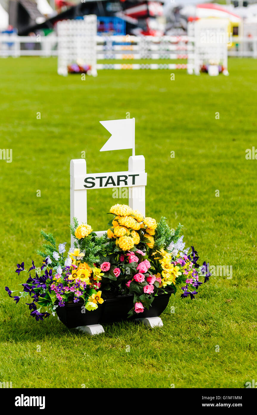 Start line at a horse showjumping ring. - Stock Image