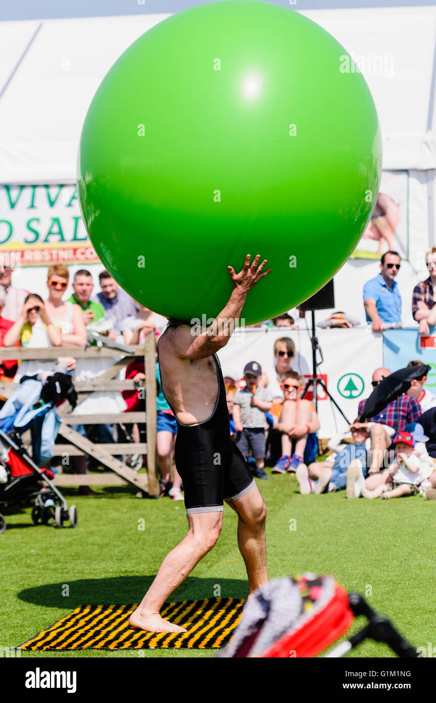 A children's performer inserts his head into a large green inflatable balloon. - Stock Image